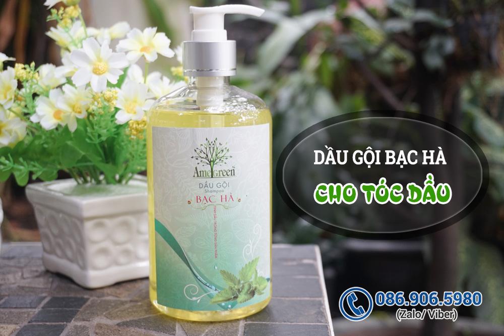 Dầu gội cho tóc dầu nhờn Bạc Hà (chai 600ml)