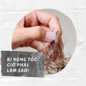 Dầu gội tinh dầu bưởi nào trị rụng tóc
