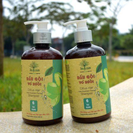 dầu gội bưởi trị rụng tóc chất lượng từ AmeGreen