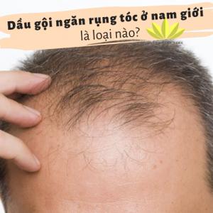 Dầu gội ngăn rụng tóc cho nam giới