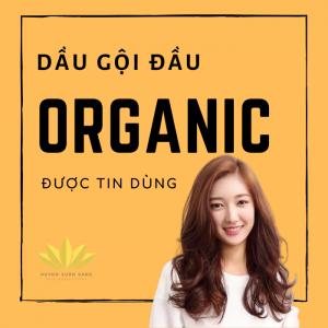 Dầu gội đầu organic được tinh dùng
