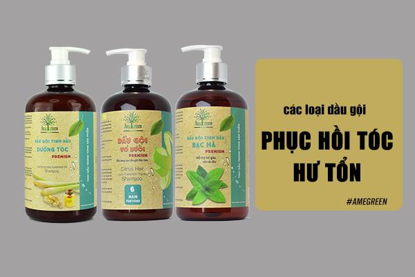 Các loại dầu gội phục hồi tóc hư tổn