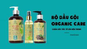 Dầu gội organic care từ AmeGreen