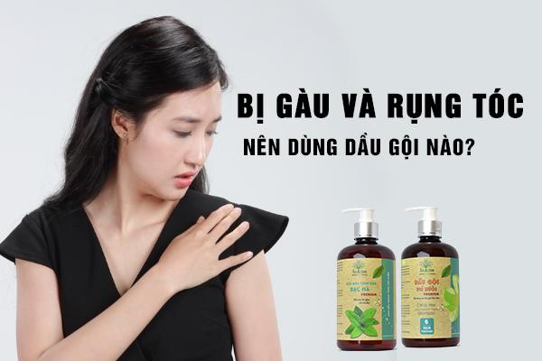 Bị gàu và rụng tóc thì nên sử dụng dầu gội nào?