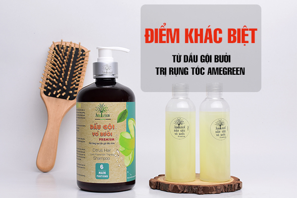 Điểm khác biệt từ dầu gội bưởi trị rụng tóc AmeGreen mang lại
