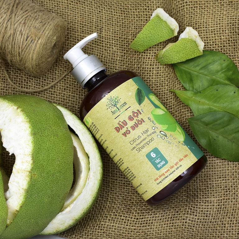 Tiêu chí đánh giá một thương hiệu dầu gội thảo dược trị rụng tóc tốt