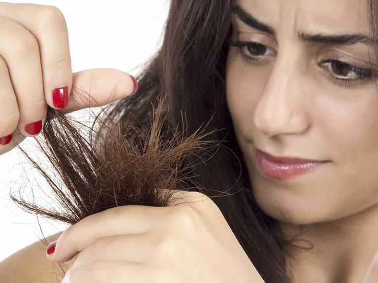 """Dầu gội tinh dầu bưởi AmeGreen - sản phẩm """"hồi xuân"""" mái tóc"""